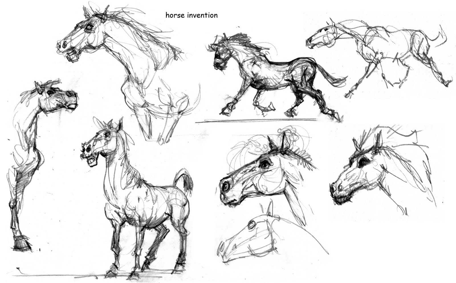 Horse Front Drawing Photo#17